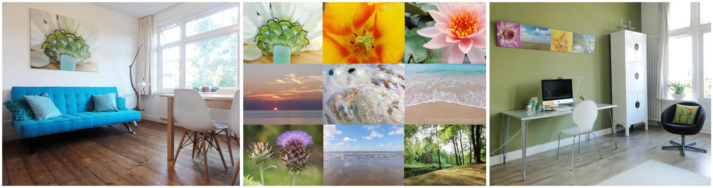 Natuurfotografie in praktijkruimte en wachtkamer