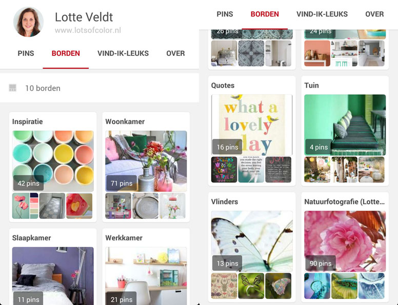 Pinterest Lotte Veldt - small